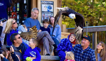 Open House at World Bird Sanctuary