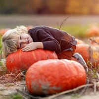 Pick pumpkins, play in corn bins and more at Daniel's Farm and Greenhouse in St. Peters.